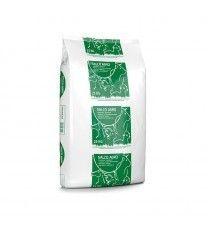 Salco Agro 25 kg