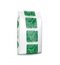 Salco Agro grof 10x25kg