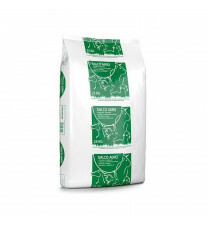 Salco Agro grof 40x 25kg